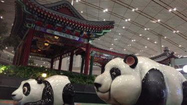 【北京首都国際空港で空港泊は可能か!?】野宿ベストスポットご紹介!