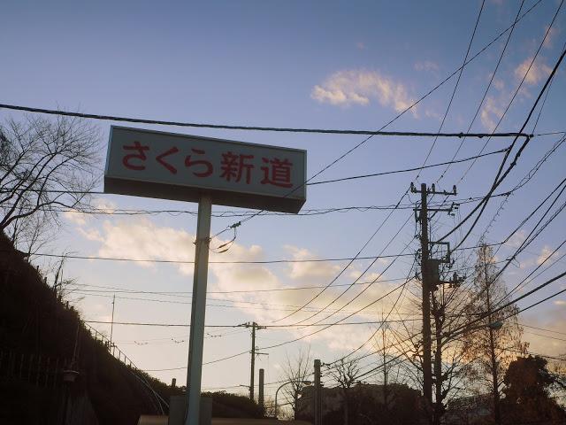 【さくら新道】「B級スポットめぐり&景勝地付き」の東京探検 ...